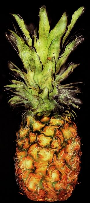 Tokarski Photograph - Golden Pineapple by Paul Tokarski