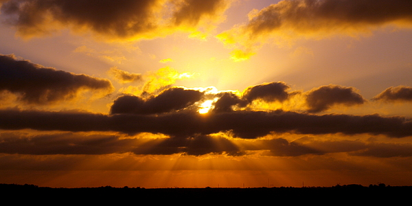 Golden Photograph - Golden Ray Sunset by James Granberry