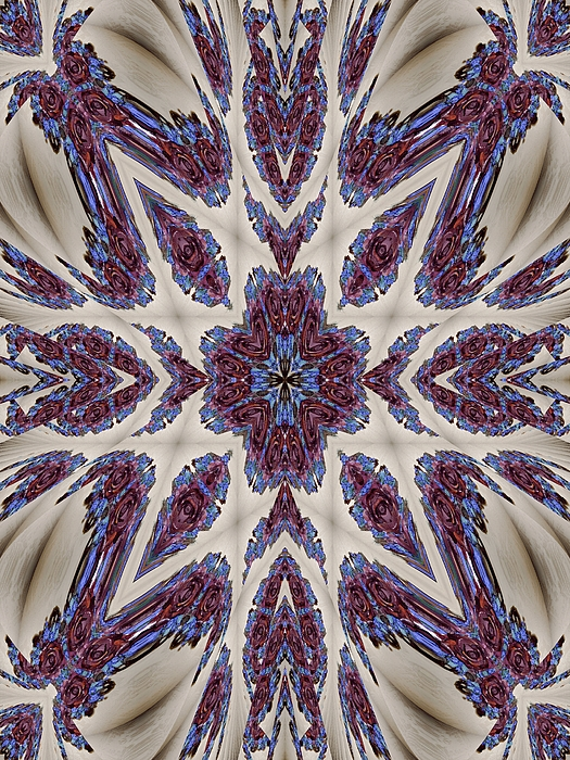 Christmas Photograph - Graceful Tapestry by Ricky Kendall