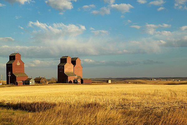 Day Photograph - Grain Elevators Stand In A Prairie by Pete Ryan