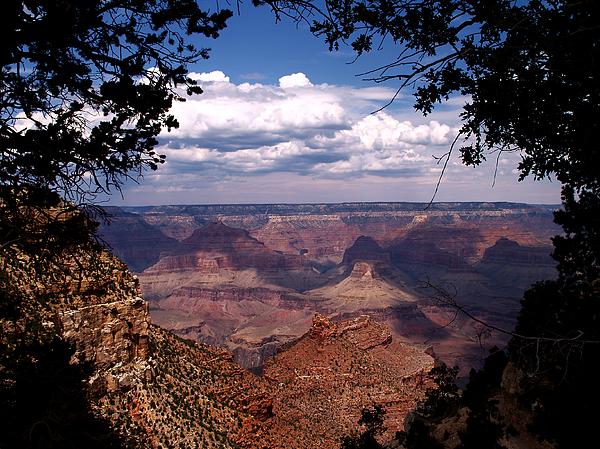 Grand Canyon Photograph - Grand Canyon II by Linda Morland