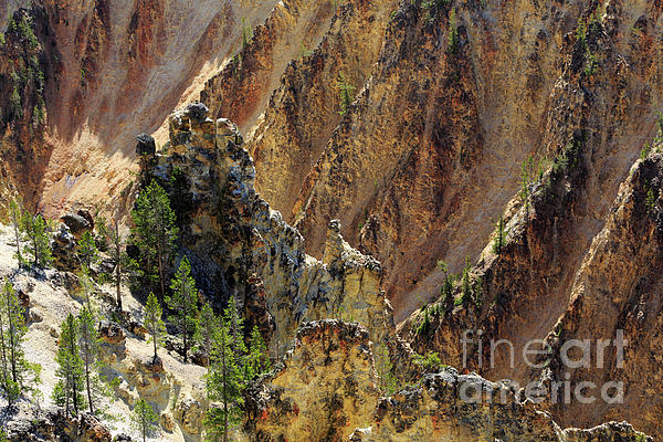 Grand Canyon Of The Yellowstone Photograph - Grand Canyon Of The Yellowstone From North Rim Drive by Louise Heusinkveld