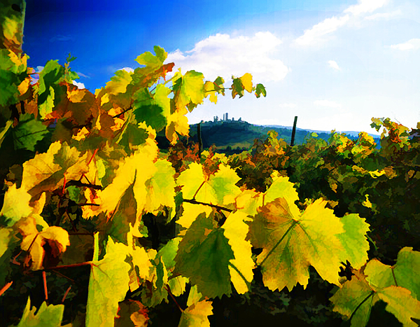 Wine Painting - Grape Leaves And The Sky by Elaine Plesser