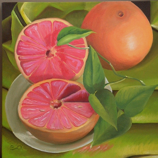 Fruit Painting - Grapefruit On Fabric by Barbara Auito