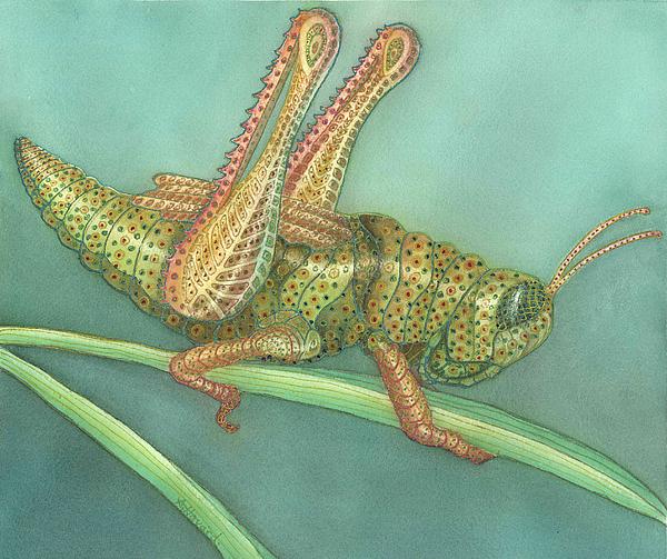 Grasshopper Painting - Grasshopper by Anne Havard