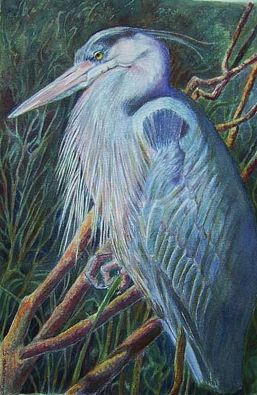 Heron Painting - Great Blue Heron by Carmen Durden
