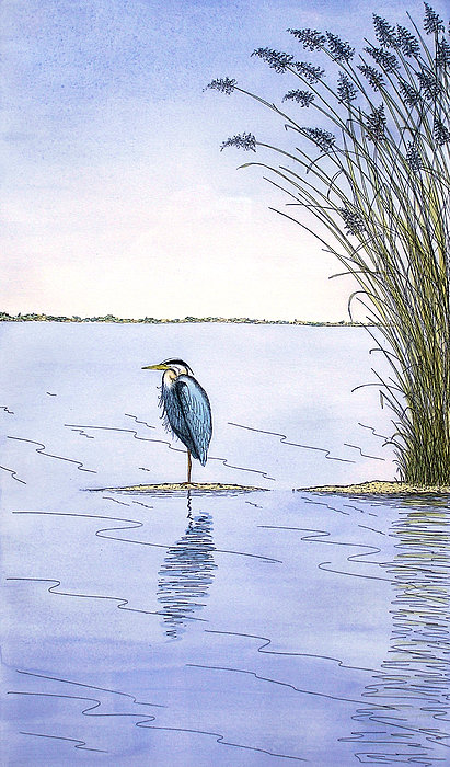 Great Blue Heron Painting - Great Blue Heron by Charles Harden