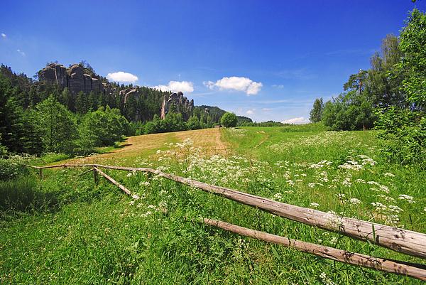 Background Photograph - Green Fields by Jaroslaw Grudzinski
