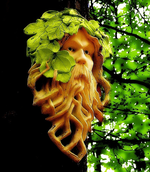 Green Man Photograph - Green Man by Jen White