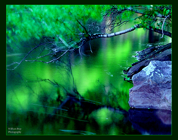 Water Photograph - Greens 01 by William Bray