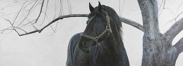 Horse Painting - Grey Orchard by Alan  Bateman