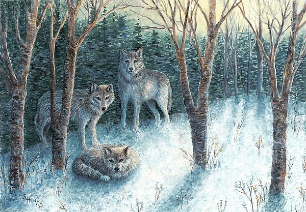 Wolves Painting - Grey Wolves At Dawn by June Hunt