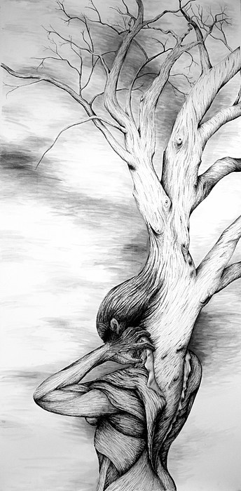 Tree Drawing - Grow by Amy Fix