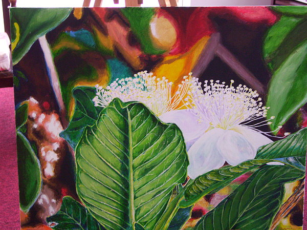 Guava Flower Painting by Jharoam Welz