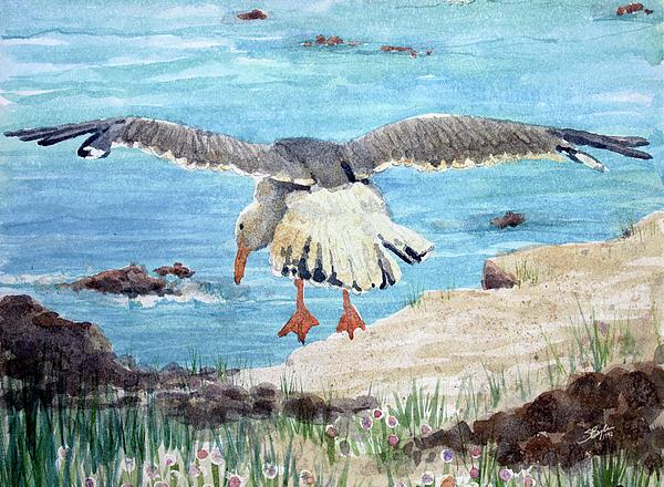 Stephen Boyle Painting - Gull On The Washington Coast by Stephen Boyle