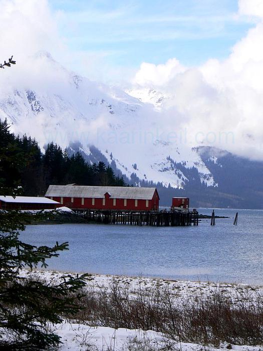 Alaska Photograph - Haines Cannery by Kaarin  Keil