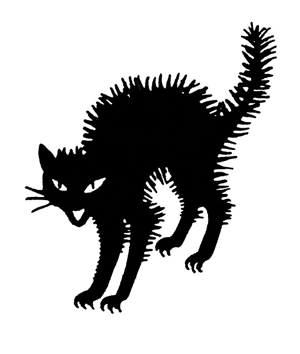 black cat templates for halloween - halloween black cat photograph by granger