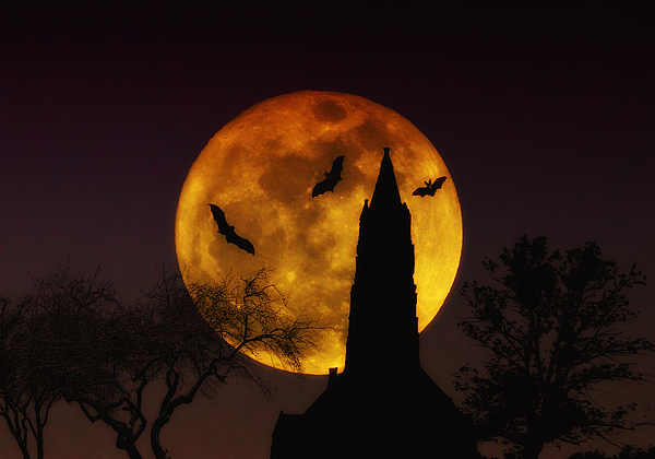 Halloween Photograph - Halloween Moon by Bill Cannon