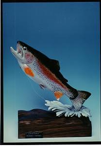 Wood Carving Relief  Sculptures Fish Trout Sculpture - Hand Carved Rainbow Trout by Stacey Mitchell