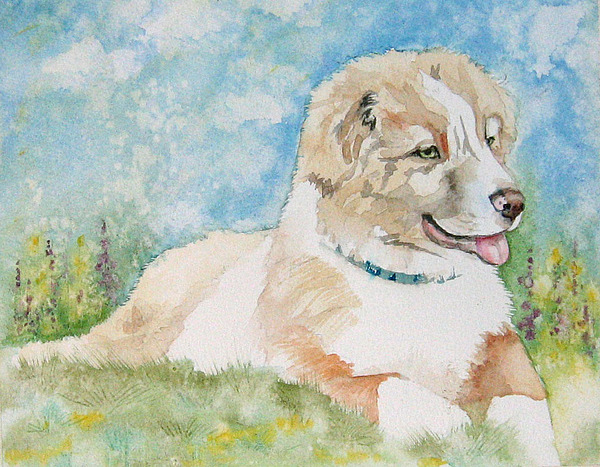 Canine Painting - Hank by Gina Hall