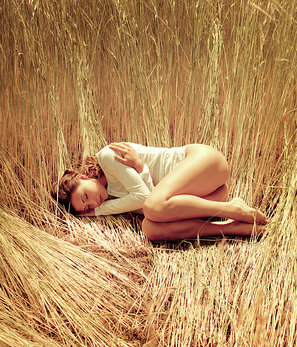 Woman Sleeping Girl Lying In The Grass In The Wheat Harvest Field Dreams Resting Tired Dream Dream Dream Holiday Sensibility Sexy Beauty Yellow Six To Seven Pyrography - Harvest by Mark Avgust