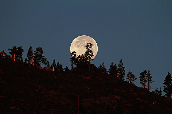 Full Moon Photograph - Harvest Moonset by Donna Kennedy