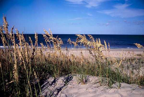 Hatteras Dunes Two Photograph by George Ferrell