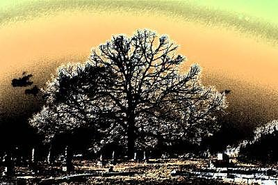 Grave Yard Photograph - Haunted Grave Yard by Tim Clemons
