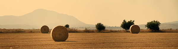 Agriculture Photograph - Hay Rolls  by Stelios Kleanthous