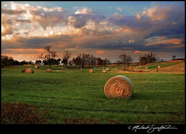 Landscape Photograph - Haybales At Dusk by Melinda Swinford
