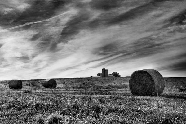 Hay Photograph - Hayrolls And Field by Steven Ainsworth