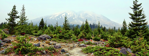 Mountain Photograph - Hazy Mt. St. Helens by Rick Lawler