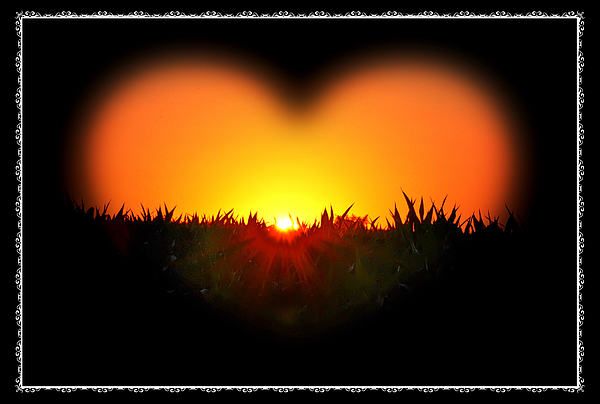 Heart Photograph - Heart Of The Sunrise by Bill Cannon