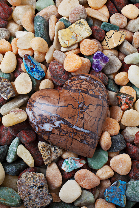 Shape Photograph - Heart Stone Among River Stones by Garry Gay