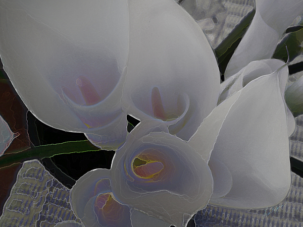 Lilly Digital Art - Heathers Flowers by Lisa Redfern