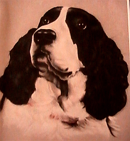 Pet Pastel - Here  by Linda Kriegel