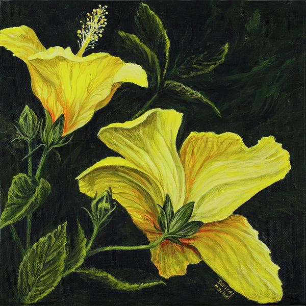 Flower Photograph - Hibiscus 2 by Darice Machel McGuire