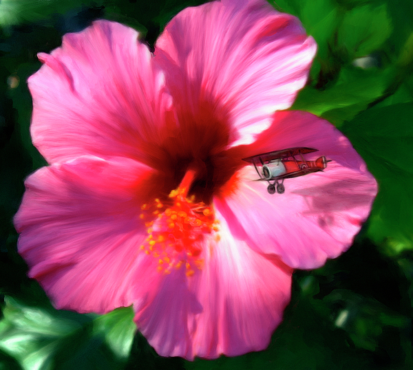 Flower Digital Art - Hibiscus Fly-by by Snake Jagger