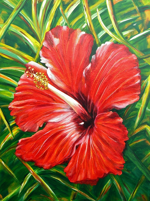 Hibiscus Painting - Hibiscus by JoAnn Wheeler