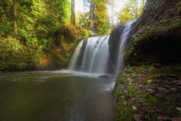 Hidden Falls Photograph - Hidden Falls In Rock Creek by David Gn