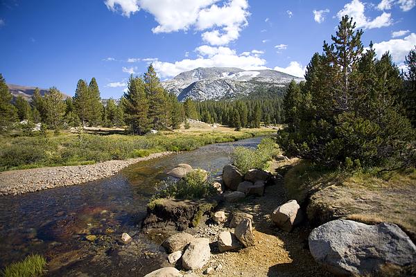 High Sierras Photograph - High Sierras Stream by Bonnie Bruno