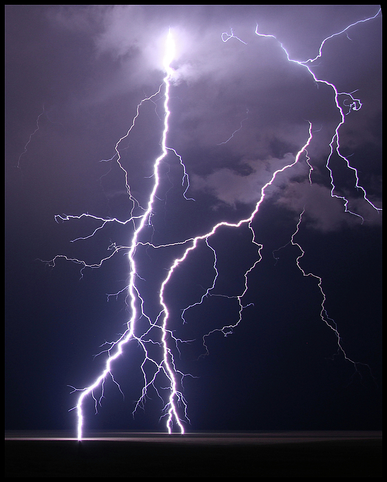 Vertical Photograph - High Voltage! by Pat Gaines