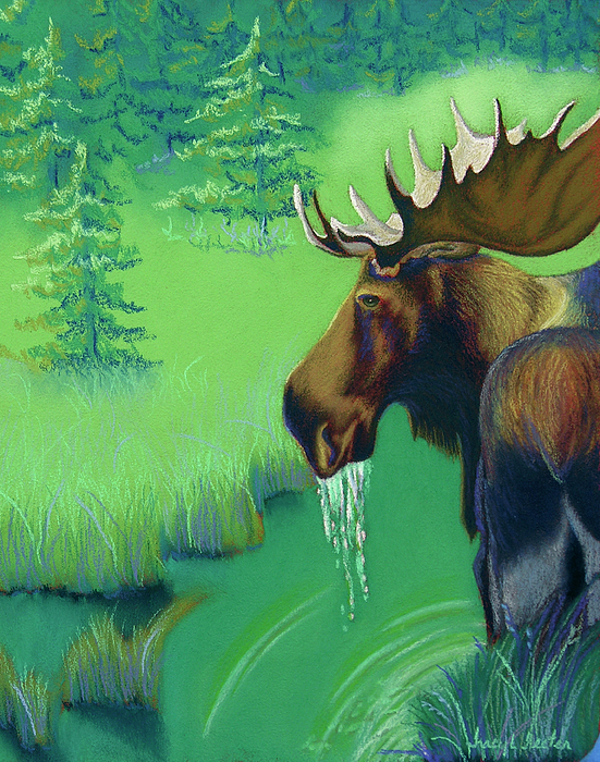 Moose Pastel - Highlands by Tracy L Teeter