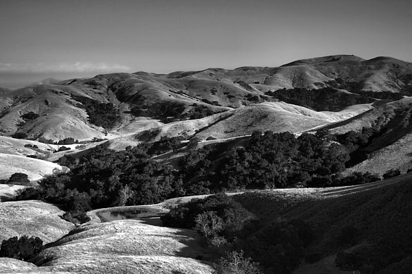 Hills Photograph - Hills Of San Luis Obispo by Steven Ainsworth