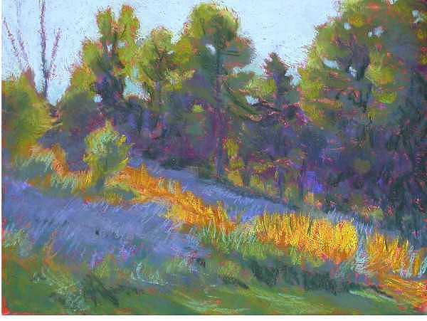 Trees Painting - Hillside Shadows by Julie Mayser