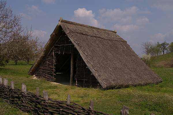 Prehistory Photograph - Home - Prehistory Edition by Catja Pafort