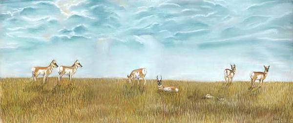 Antelope Painting - Home On The Range by Beth Campbell