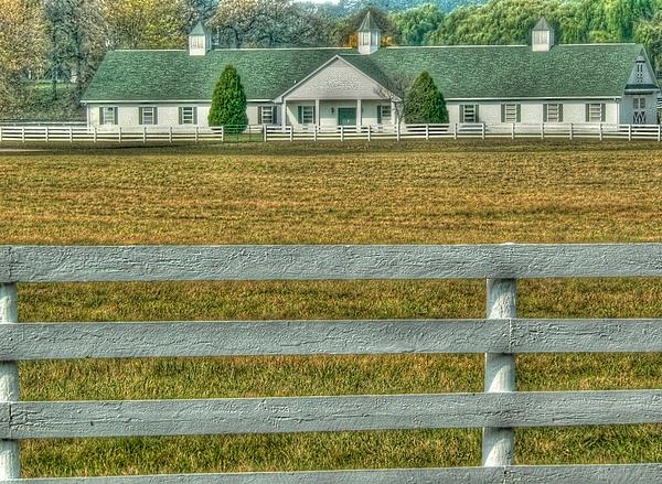 Horse Farms Photograph - Horseland by David Bearden