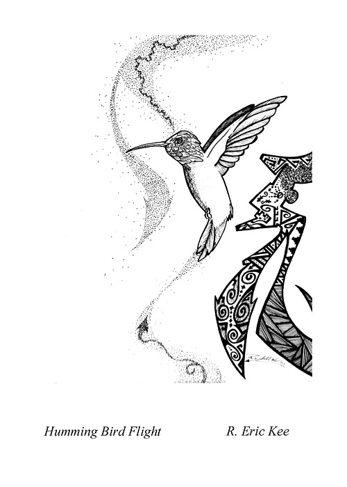 Hummingbird Drawing - Hummingbird Flight by Eric Kee