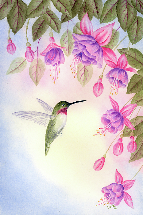 Hummingbird With Fuchsia Painting by Leona Jones